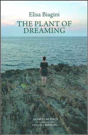 The Plant of Dreaming